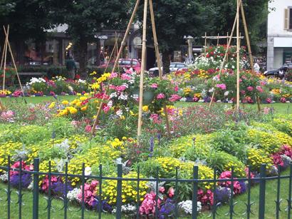 花々.jpeg